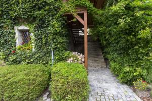 Zahrada ubytování Penzion Ve stoleti