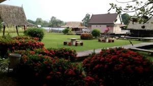 A garden outside Bamboo House Resort