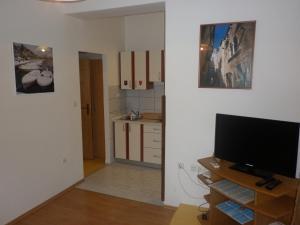 TV i/ili zabavni centar u objektu Apartments Calendula Rubic