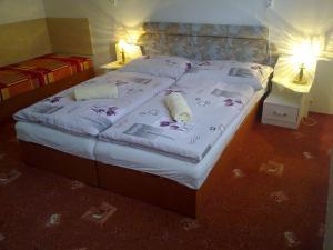 Postel nebo postele na pokoji v ubytování Apartman Trnovec