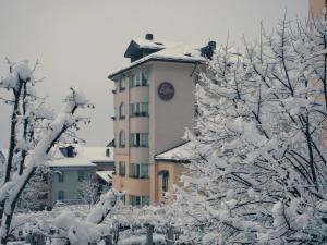 Bijou during the winter