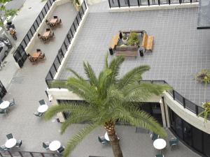 Ein Blick auf den Pool von der Unterkunft Hotel Joya oder aus der Nähe