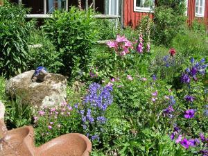 A garden outside Lillåns B&B