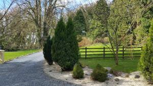 A garden outside River Finn Cottage
