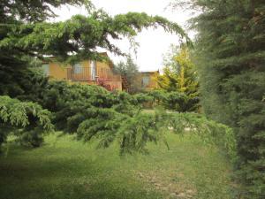 A garden outside Cabañas Los Arreboles