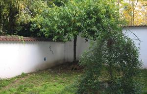 A garden outside Casa Calicantus