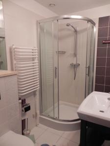 Łazienka w obiekcie Apartament Brandy Radowid