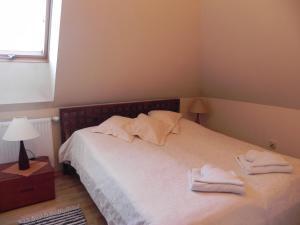 Łóżko lub łóżka w pokoju w obiekcie Apartament Brandy Radowid