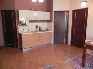 Kuchnia lub aneks kuchenny w obiekcie Apartament Brandy Radowid