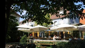 Der Swimmingpool an oder in der Nähe von Karpfenhotel im Gasthaus Sindel-Buckel