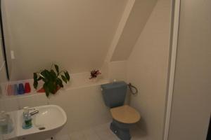 Koupelna v ubytování Pension U Wondracku