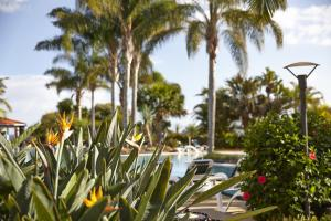 The swimming pool at or close to Suite Hotel Eden Mar - PortoBay