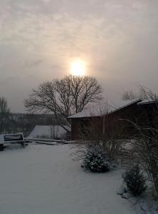 Lekanders Bär & Boende under vintern
