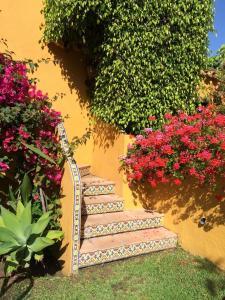 En trädgård utanför Family hotel Al- Ana Marbella and Golf Villa