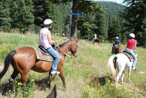 Horseback riding at the resort or nearby