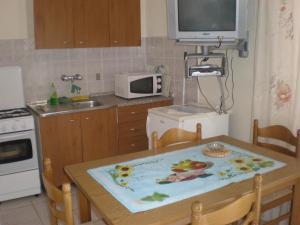 A kitchen or kitchenette at Apartments Terezija