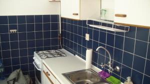 Kuchnia lub aneks kuchenny w obiekcie Apartament Kozia I