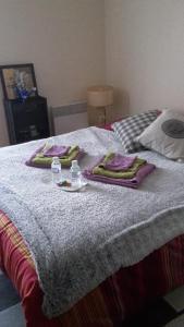 A bed or beds in a room at La Terrasse de Beaulieu