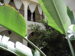 A balcony or terrace at Riad Signature