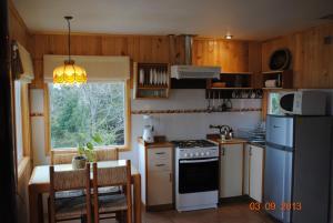Una cocina o zona de cocina en Cabañas Trayen