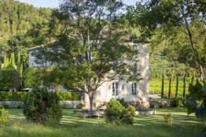 A garden outside Chateau Talaud