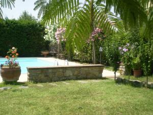 The swimming pool at or near Nido Del Merlo