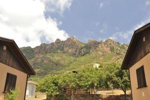 Vista generica sulle montagne o vista sulle montagne dall'interno del campeggio