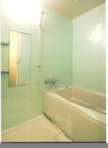 Kamar mandi di Hotel Palace Japan