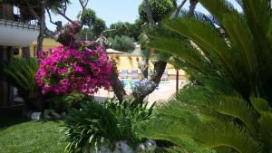A garden outside Alba Chiara