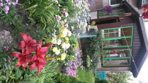 A garden outside Loči