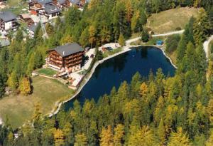 Blick auf Hotel zum See aus der Vogelperspektive