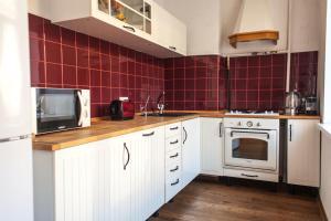Кухня или мини-кухня в Apartment na Reki Moyka 28