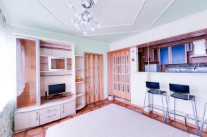Телевизор и/или развлекательный центр в ROTAS On Moskovsky 224 Floor 15