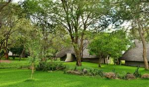 A garden outside Victoria Falls Safari Suites