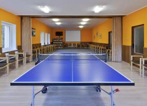 Ping-pong facilities at Chata Lesanka or nearby