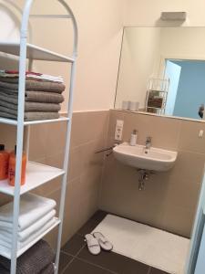 Salle de bains dans l'établissement Appartement Blumenstrasse