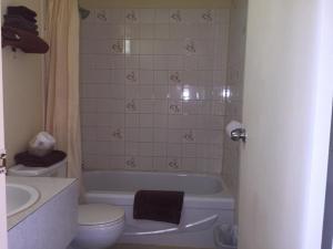 A bathroom at Northern Lites Motel