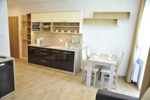 A kitchen or kitchenette at Apartamenty Watra