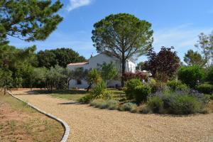 A garden outside Villa Valdor