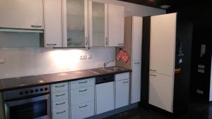 Küche/Küchenzeile in der Unterkunft Apartment Rhein Main