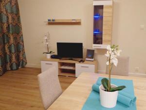 Telewizja i/lub zestaw kina domowego w obiekcie Rental Apartments Żurawia