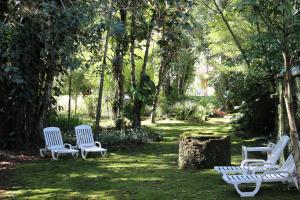 A garden outside Casa do Fachoalto
