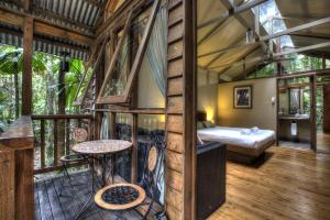A bunk bed or bunk beds in a room at Daintree Wilderness Lodge