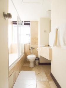 A bathroom at Albany Hotel