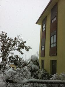 Mirasierra during the winter