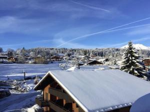Les Aiguilles De Warens during the winter