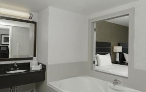 Bagno di Embassy Suites by Hilton Niagara Falls/ Fallsview