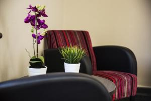 A seating area at Toongabbie Hotel