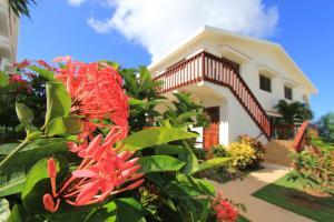 Ein Garten an der Unterkunft Carimar Beach Club
