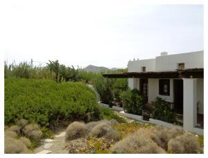 Giardino di Skyros Studios